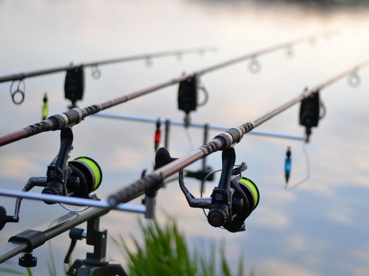 fishing-3302535